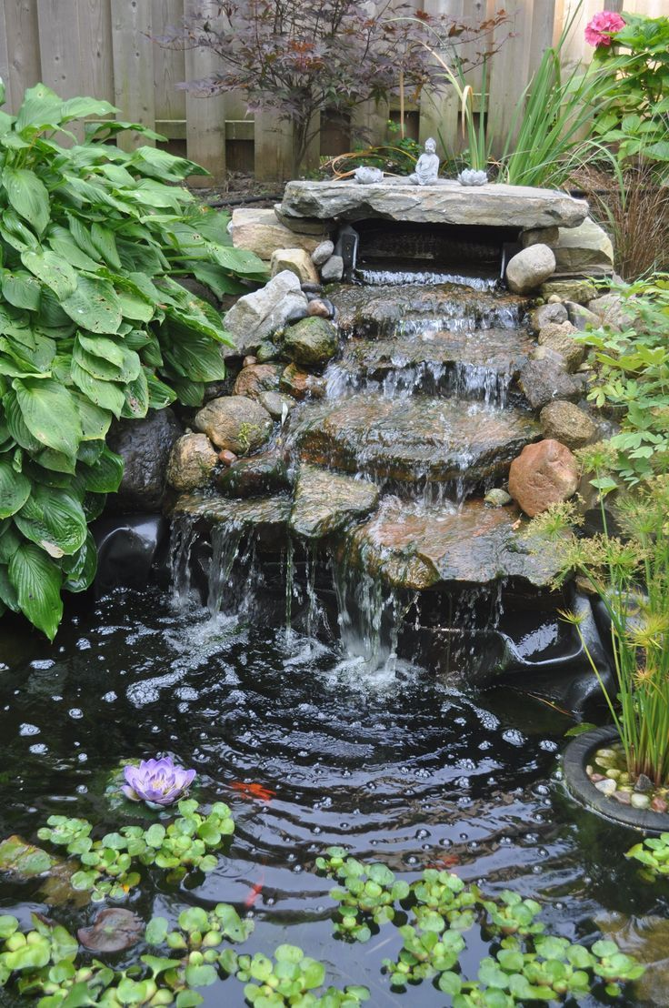 Bassin De Jardin Design Zen latest snap shots zen garden waterfall popular you'll find