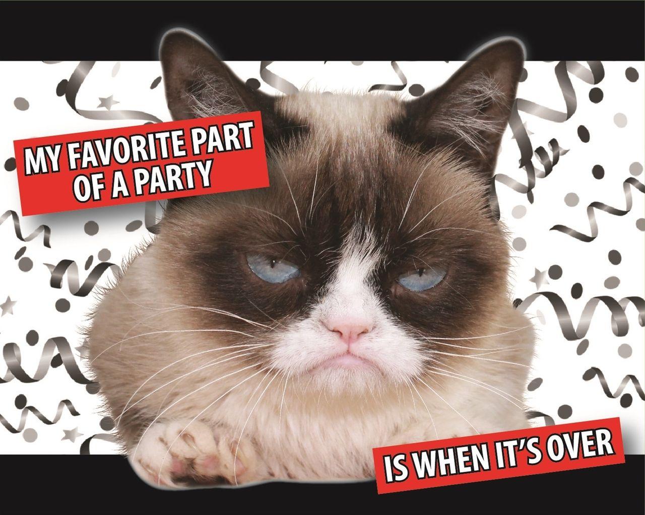Grumpy Cat Party Invitations Grumpy Cat Party Supplies Grumpy