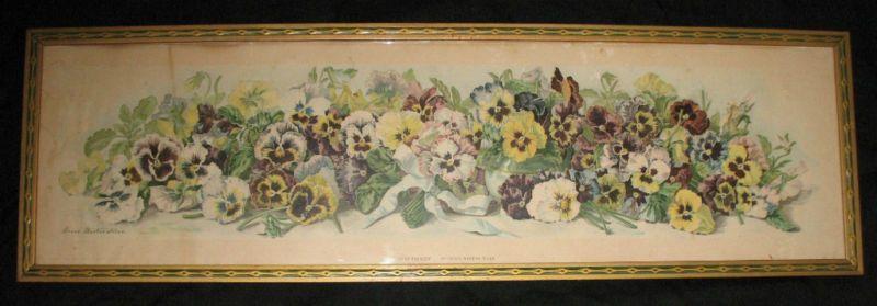 Art Print of Vintage Art Study of Pansies by Grace Barton Allen