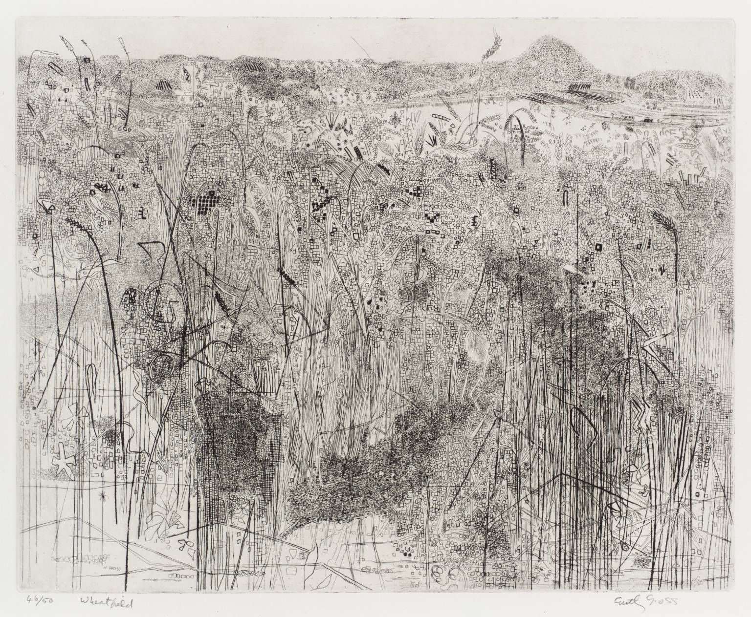 Anthony Gross Wheatfield 1966 Intaglio print on paper ... - photo#33