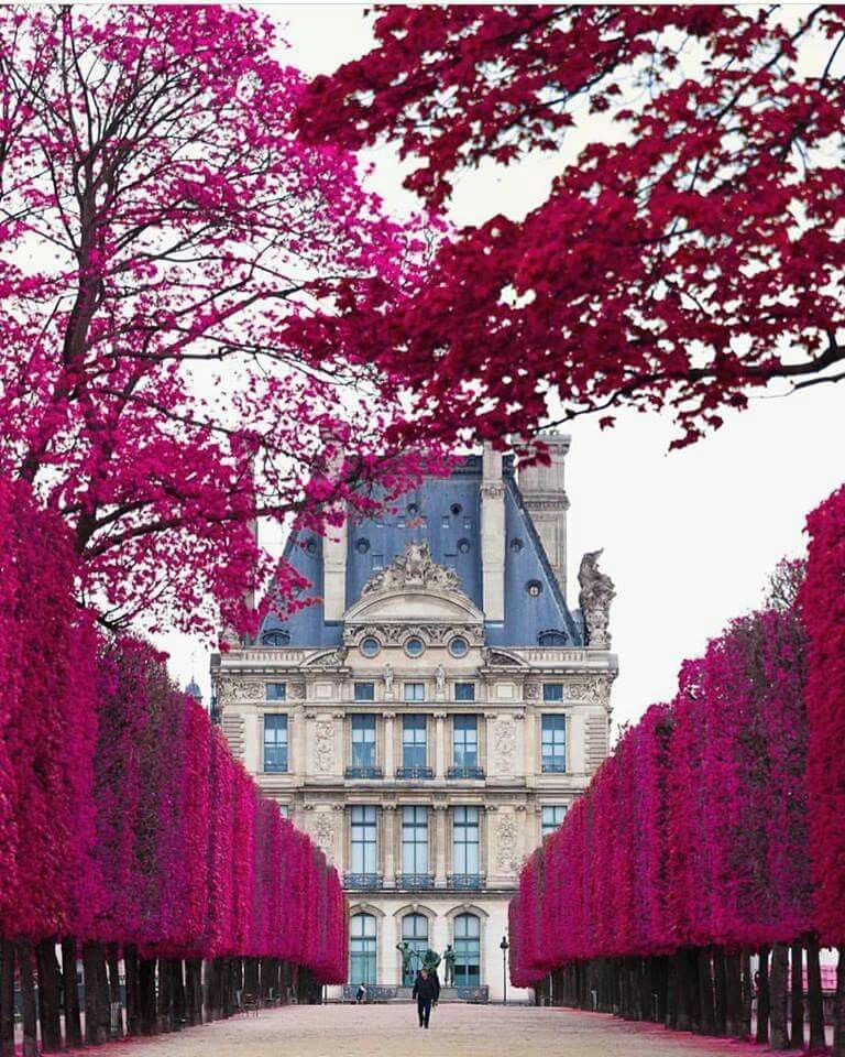 Jardín de las Tullerias - Paris