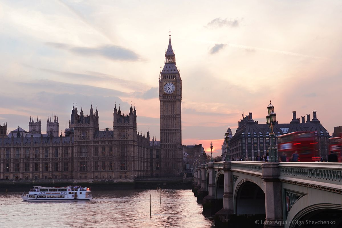 Big Ben in the evening #westminster #london #big ben