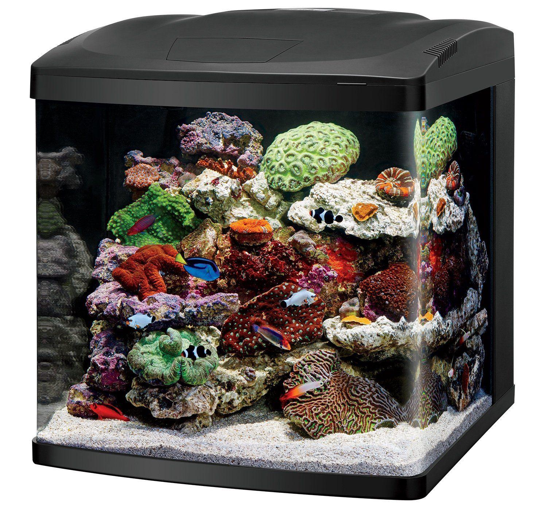 Pin On 5 Best Saltwater Aquarium Starter Kits