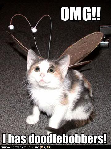 Funny Cat Pictures With Captions Can Has Cheeseburger Website