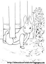 peter rabbit coloring pages free for kids
