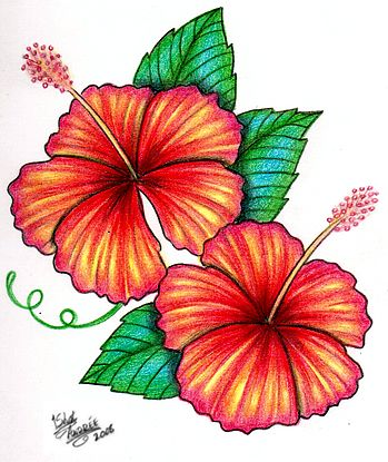 Hibiscus Tattoo Design By 1shotandree Deviantart Com With Images