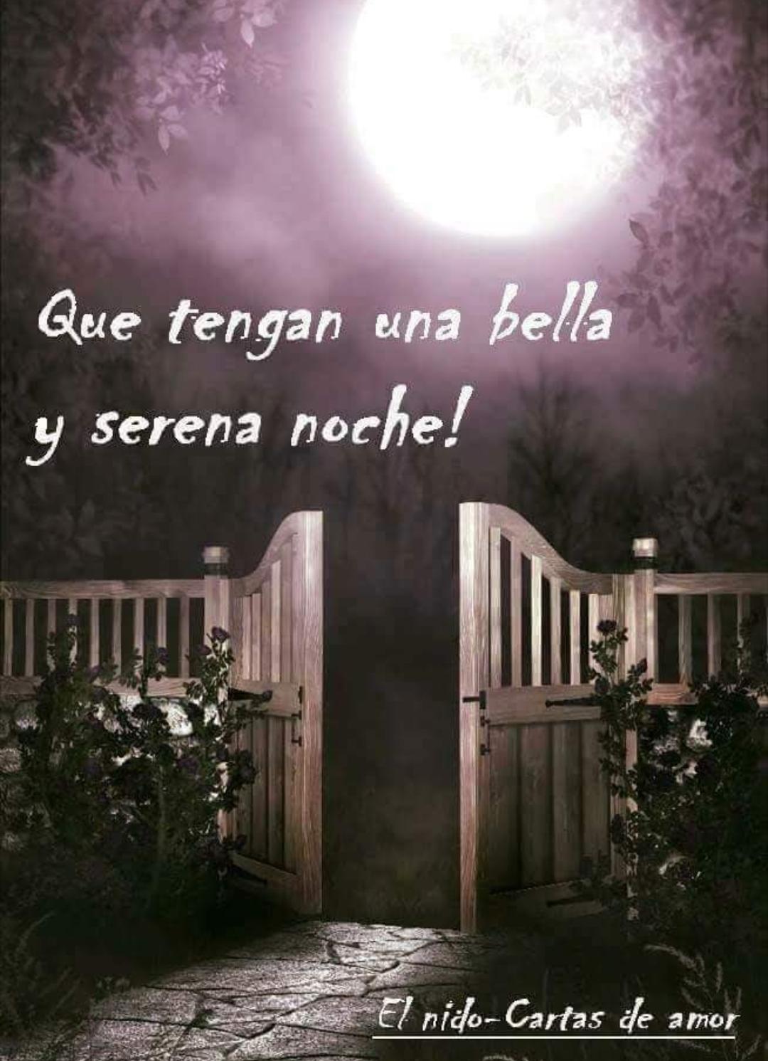 Pin De Maria Alvarez En Buenas Noches Buenas Noches Frases