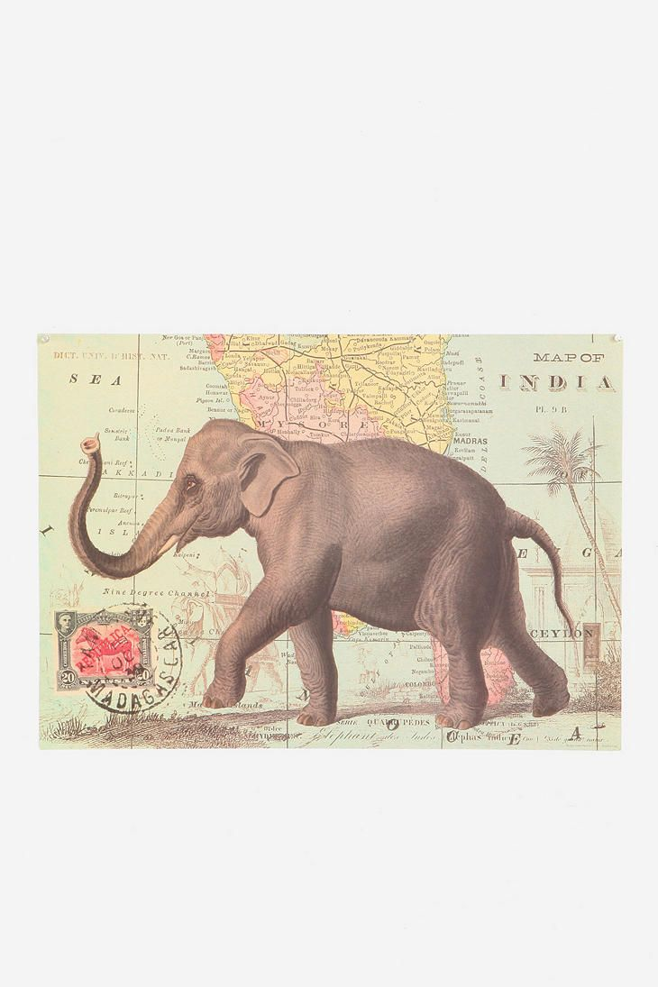 Elephant Map Poster  #UrbanOutfitters