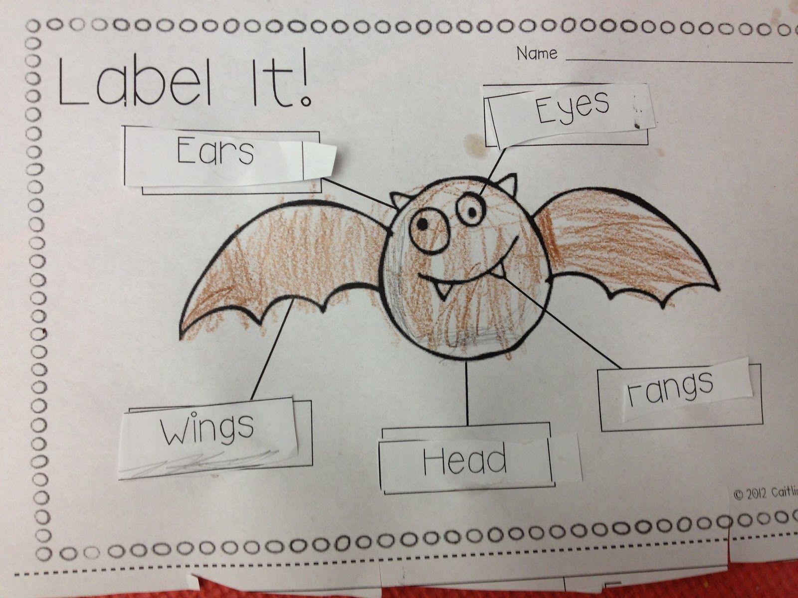 medium resolution of bat diagram label wiring diagram for youlabel bat diagram wiring diagram datasource bat diagram label