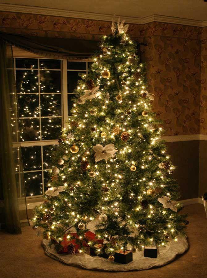 Christmas Gift httpswwwamazoncomPainting Educational Christmas Tree Window Lights