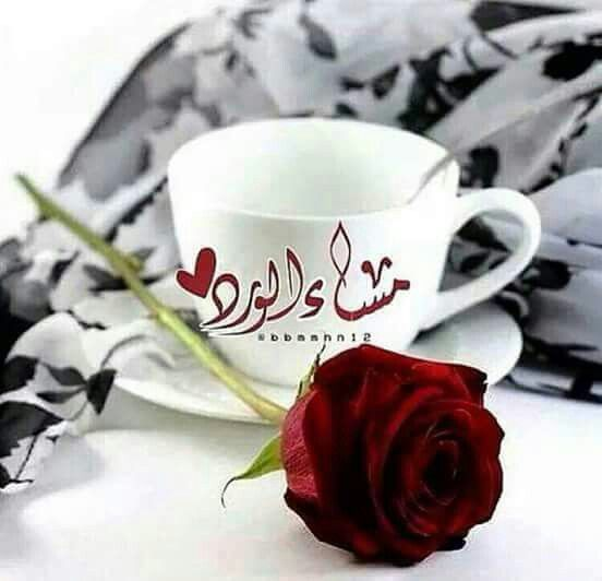 Pin By N K On Good Morning صباح ومساء Good Evening Morning Blessings Evening Quotes
