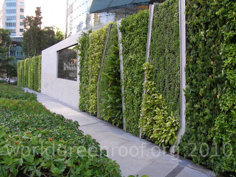 Living in a concrete jungle concrete green walls and walls for Living plant walls