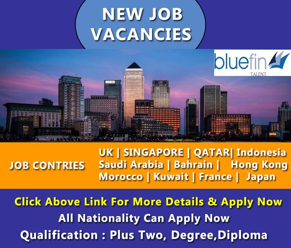 Bluefin talent jobs free visa ticket
