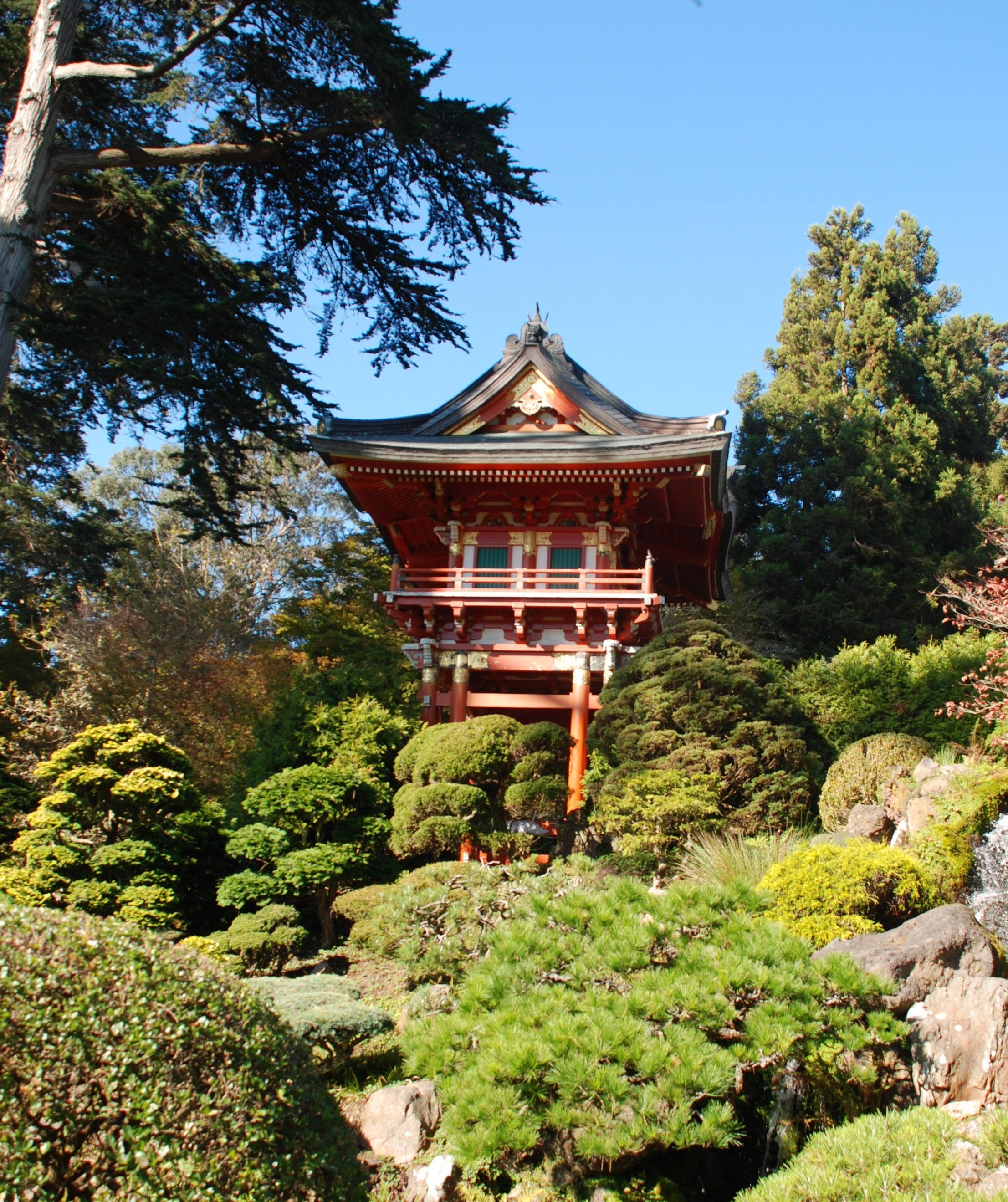San Francisco Japanese Tea Garden Landscape design