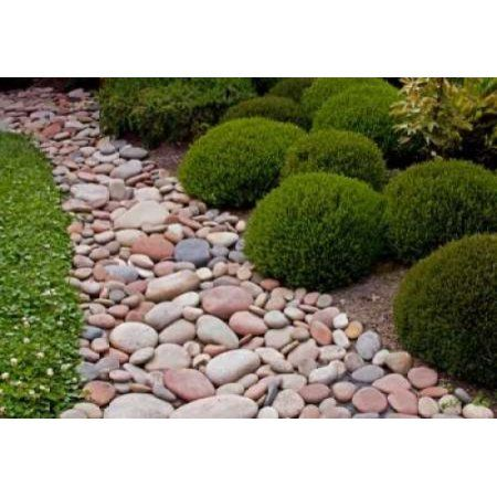 Home Landscaping With Rocks Landscaping Tips Garden
