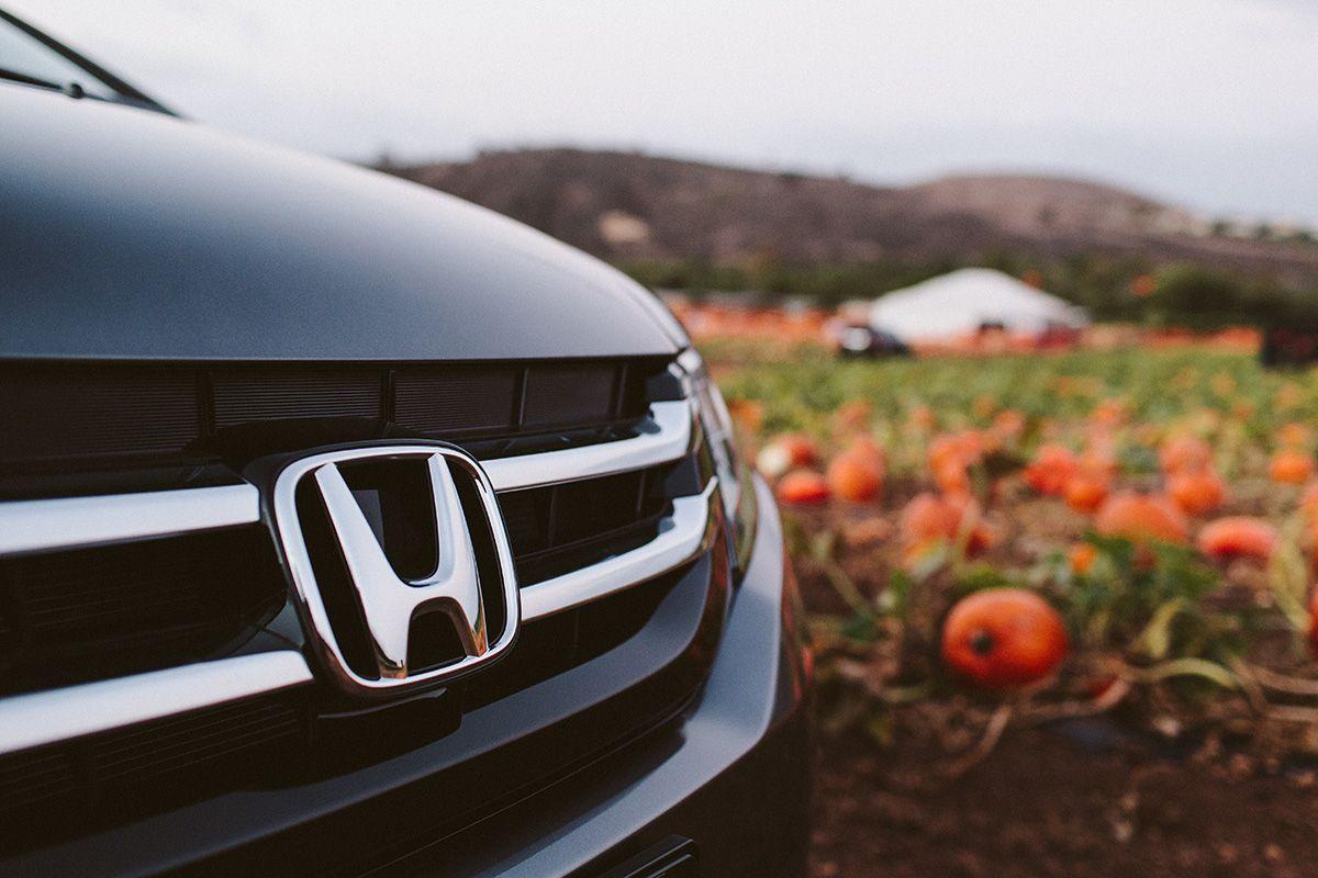 Sam Swope Honda >> Scoping Out The Pumpkins Autumn Outdoors Honda