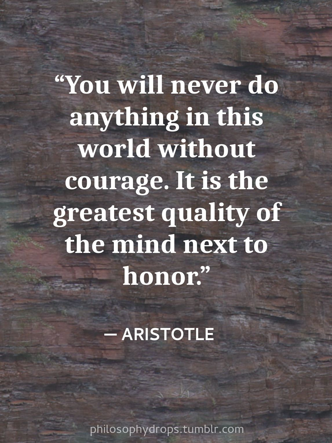 Philosophy Quotes Mesmerizing Philosophy Quotes Aristotle Courage Honor Greatest Quality Photo . Design Inspiration