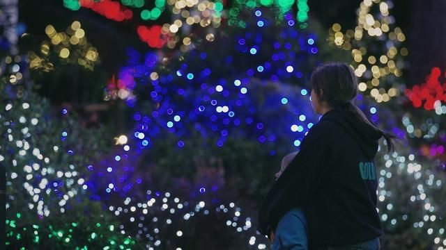 Holiday Lights At Sacres In Coos Bay Thanksgiving Thru New Years Eve