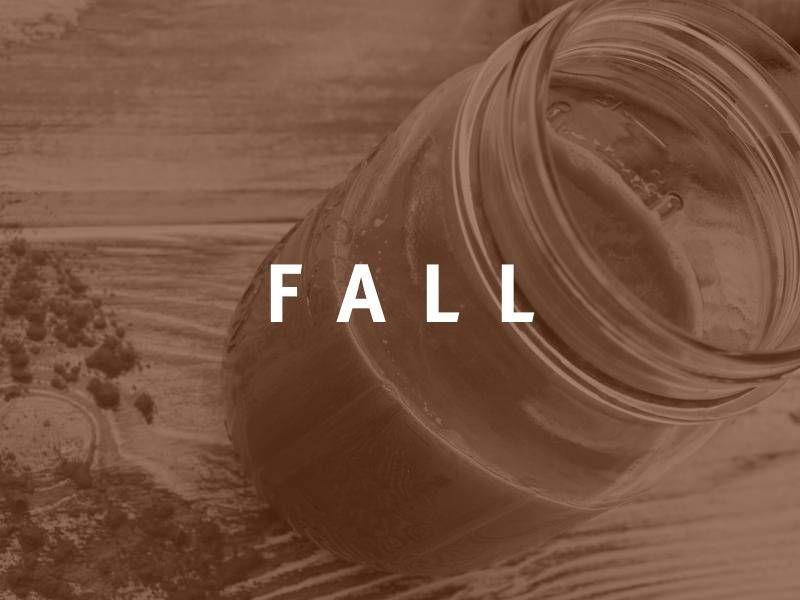3 Day Juice Cleanse for Fall {Raw, Vegan, Paleo} - The Blender Girl