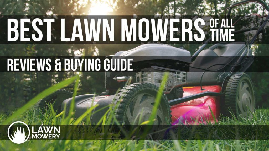 Welcome To Lawnmowery The Best Lawn Mower Great Dog Names