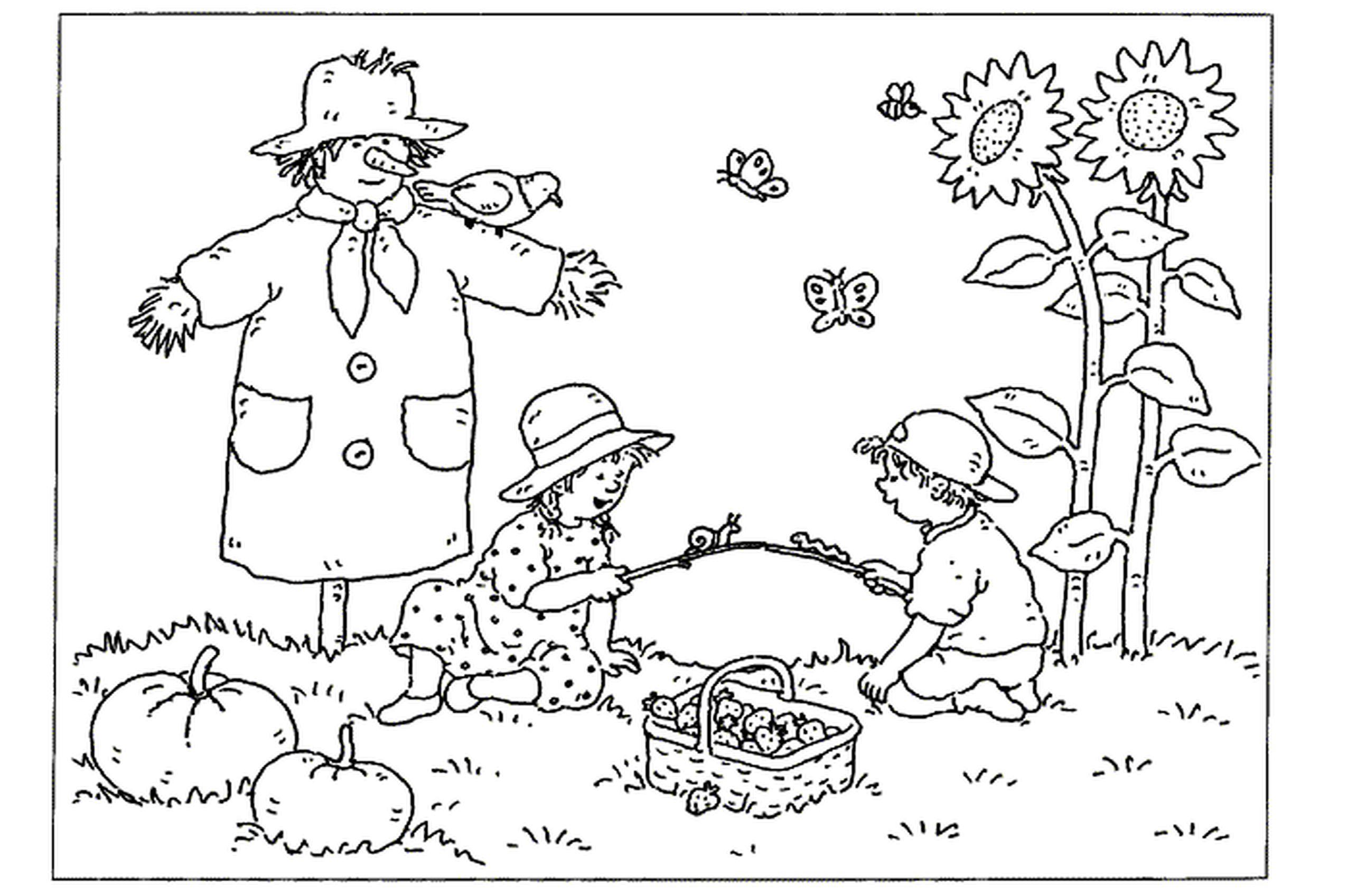 Free Fall Coloring Pages For Kids Jpg 2550 1696 Gratis Kleurplaten Kleurplaten Voor Volwassenen Kleurboek