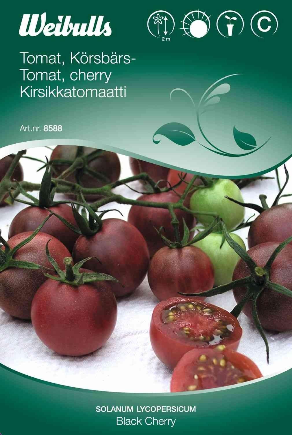 black sweet cherry tomat