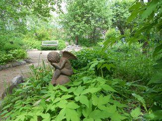 Vivamon puutarha - Hiljaisuuden puutarhan ystävät ry