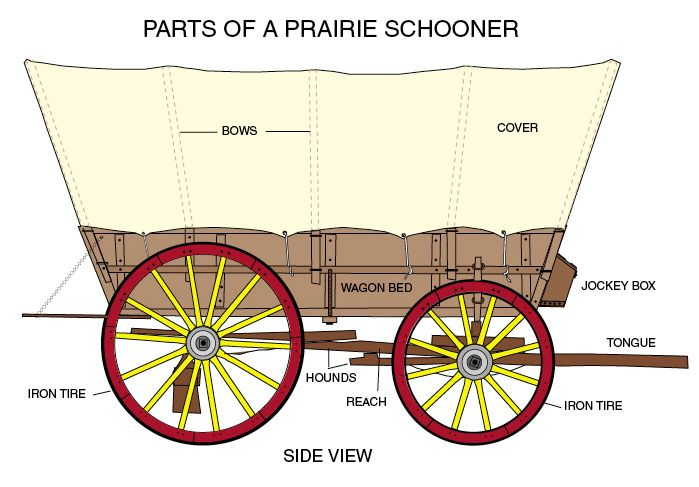 conestoga wagon plans | labeled diagram great for notebook page  also see  back view