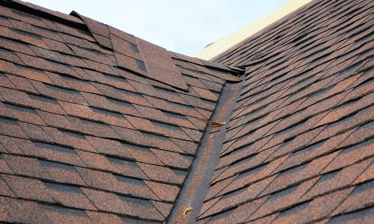 Best Let Roof Repairs Contractor Gratify All Of Your Roofing 400 x 300