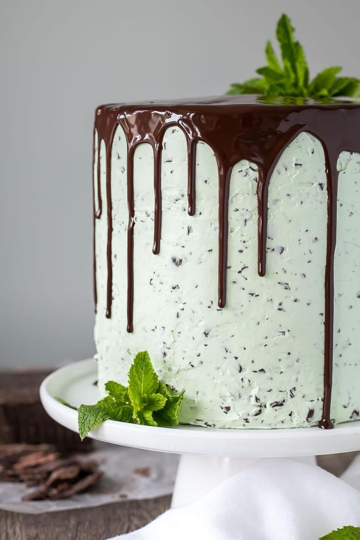 This Mint Chocolate Chip Cake is a mint lover's dream! Layers of decadent chocolate cake topped with a silky mint chip buttercream