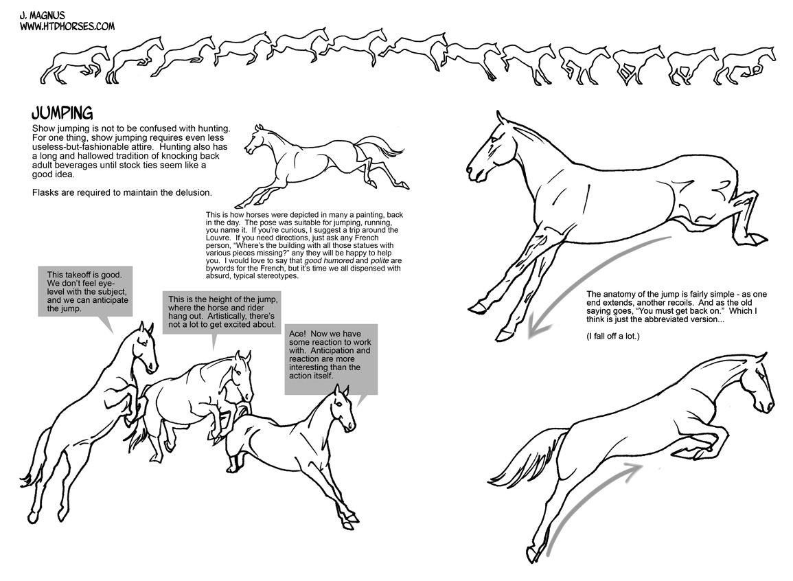 How To Draw Horse Eyes Did You Miss Part I? Shame On You Part One: