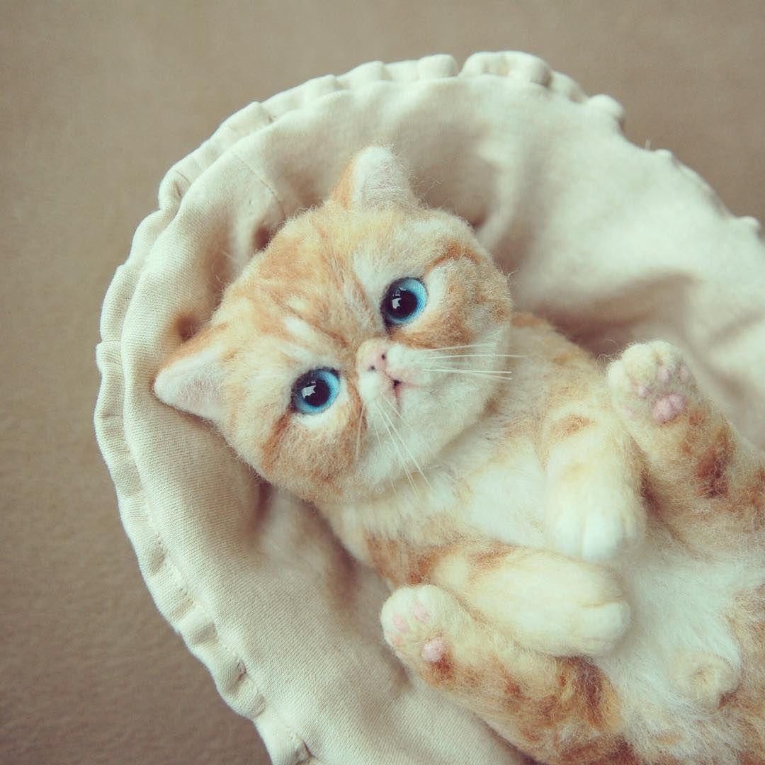 Beautiful Needle felting project wool cat(Via @yoko_woodle_handcrafted)