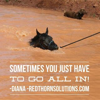 Redthorn Solutions LLC  : Ready to Go All In?