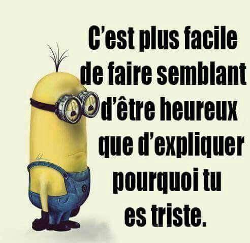 La Tristesse Les Minions Quotes Minions Quotes Words