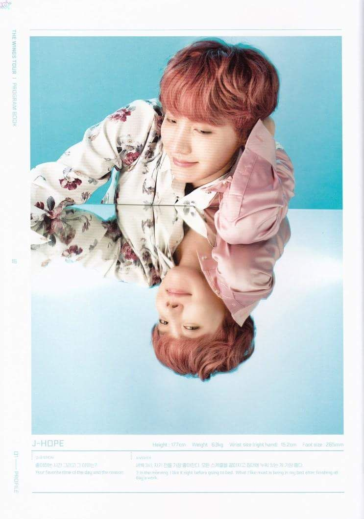 The WINGS Tour Program Book