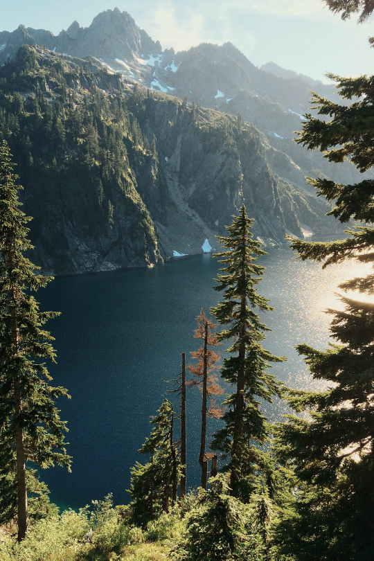 "expressions-of-nature: "" by brannonronia "" Vegan Inspiration/Nature/Cosy Blog"