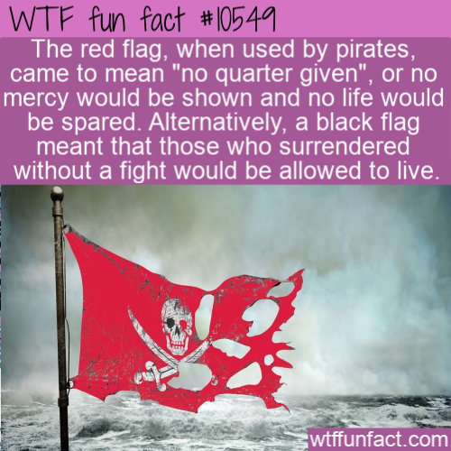 Wtf Fun Fact Pirate Flag Colors In 2020 Wtf Fun Facts Fun Facts Weird Facts