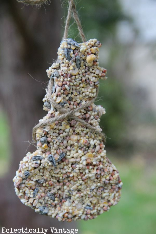 Love Birds - Making Simple Birdseed Ornaments | Bird seed ...