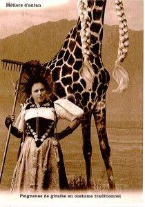 Jacques et Hubert Froidevaux, et leur ami Miguel Morales, ont inventé un humour suisse, dont les cibles sont l'armée, le Cervin et les nains de jardin. Rencontre avec Plonk et Replonk à La Chaux-de-Fonds. Plonk Et Replonk, Costume Traditionnel, Girafes, Insolite, Belles Images, Humour, Photographie, Rien, Trucs