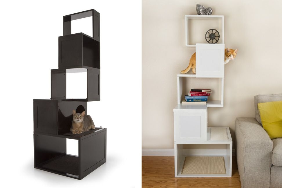 Captivating Spoil Your Lovely Cats With Contemporary Cat Furniture | HomesFeed