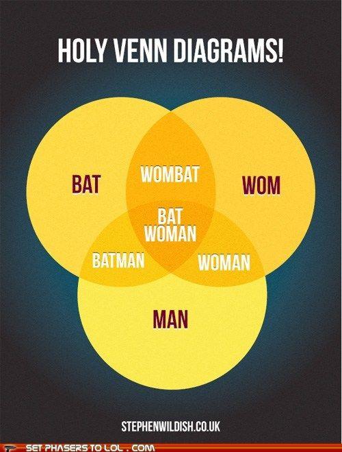 Venn Diagram Chuck Norris Smart Wiring Diagrams
