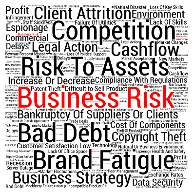 The Top 50 BUSINESS RISKS and how to manage them Risk