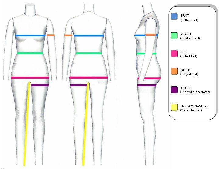 Here's How to Take Measurements for Accurate Modeling ...