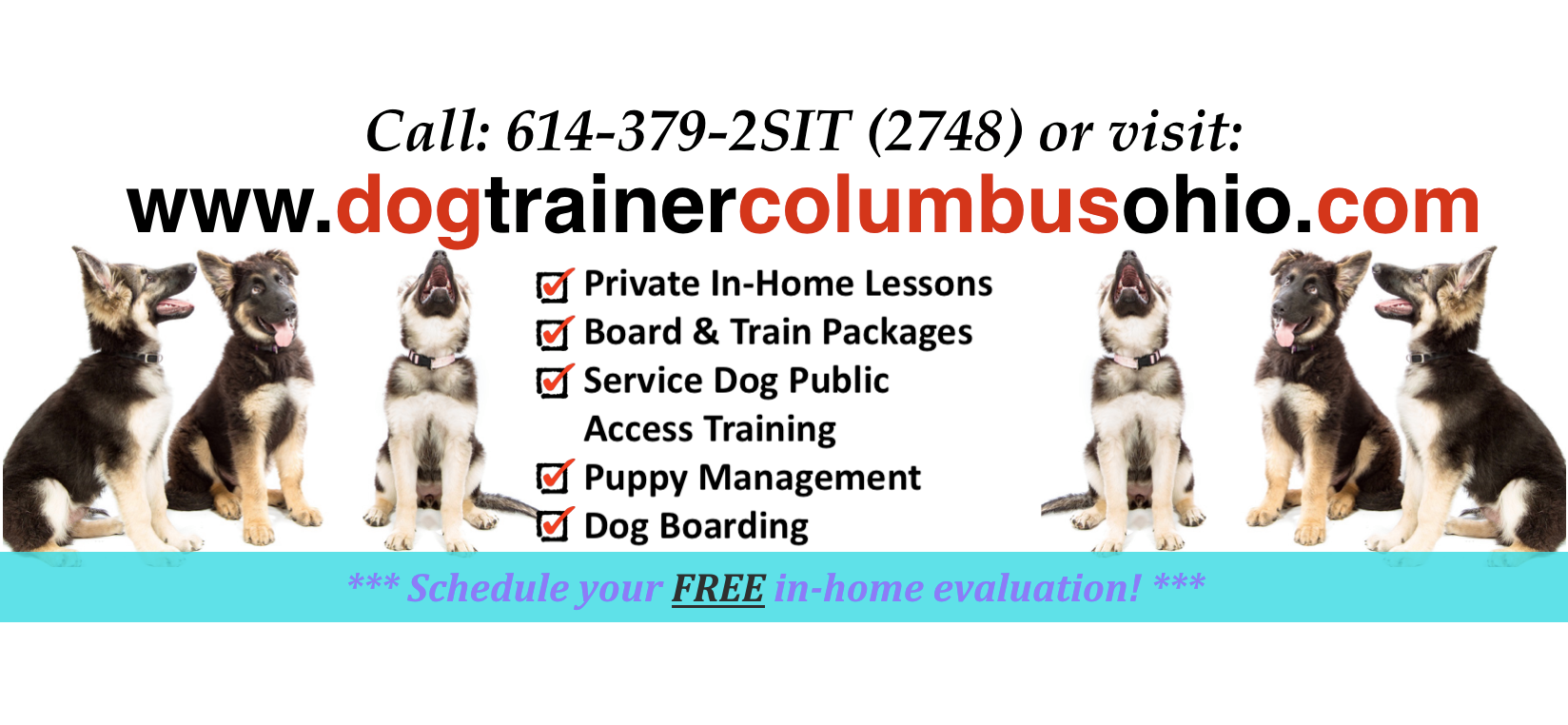 Dog Training Columbus Ohio Provides World Class Dog Obedience And Dog Behaviour Training Throughout Columbus New Alba Dog Training Obedience Dog Training Dogs