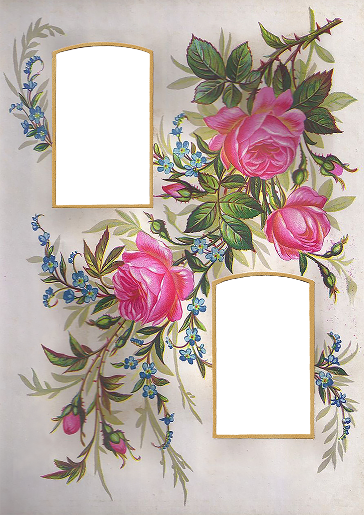 Wings of Whimsy: Rose Album Mat #vintage #ephemera #freebie #printable #valentine