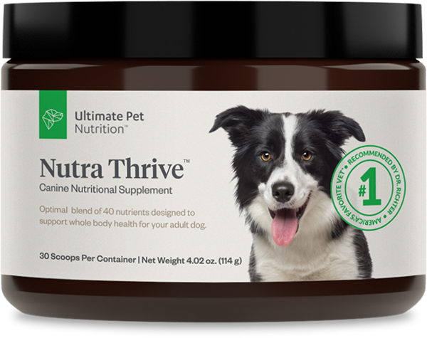 Nutra Thrive Animal nutrition, Nutrition, Homemade dog