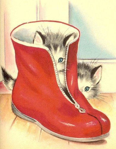 kittens in rubber boot