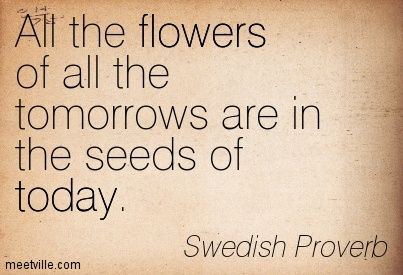 All the flowers of all the tomorrows are in the seeds of today. Swedish Proverb