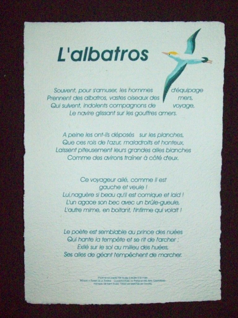 Lalbatros Poeme De Baudelaire Poësiela Peinture Des