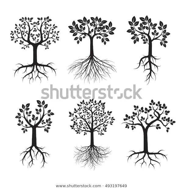 Pin By Juliecheinen3 On Family Size Root Vector Black Tree Vector Illustration